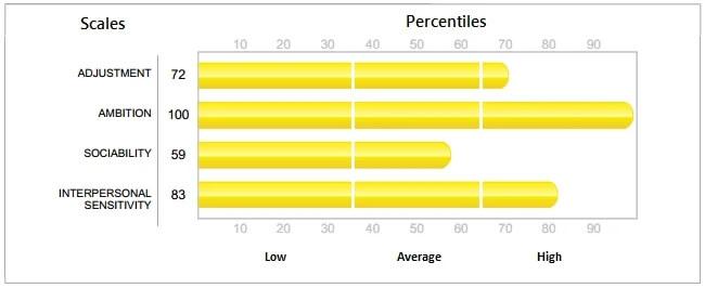 Hogan Assessments HPI Sample Test Report